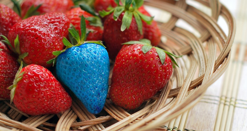 strawberries bowl with blue strawberry